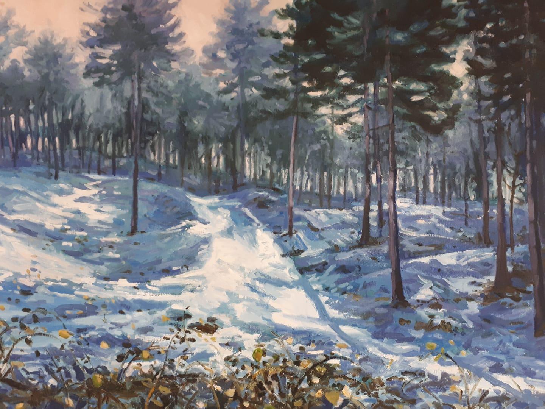 landschap sneeuw Jo Dumon Tak